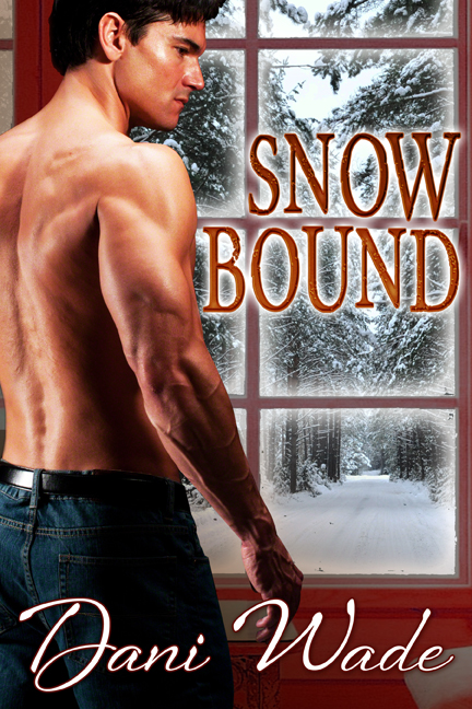 UnCoverMondays_SnowBound_DaniWade